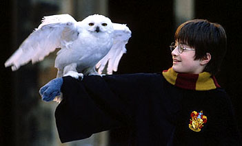 Image result for harry potter and the philosopher's stone movie