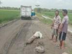 Hindari Jalan Baru Diperbaiki Rusak, Warga Buat Tiang Blokir