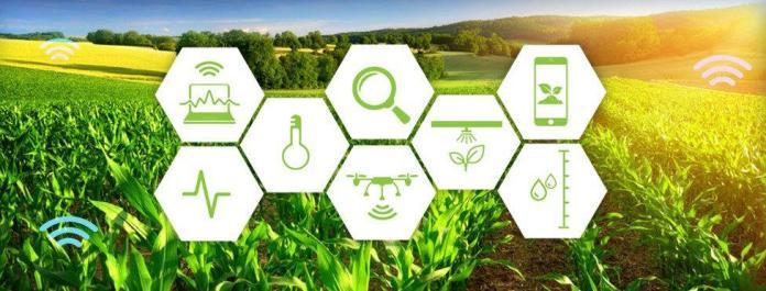 IoT trong nông nghiệp và trồng trọt