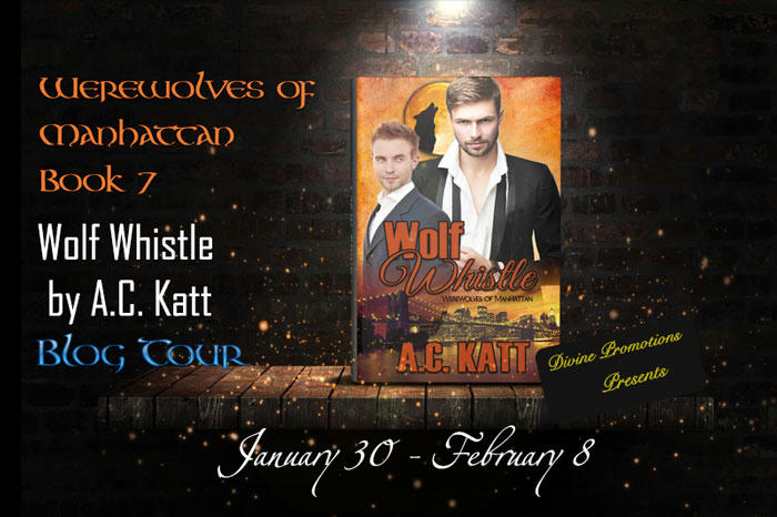 A.C. Katt - Wolf Whistle BT Banner