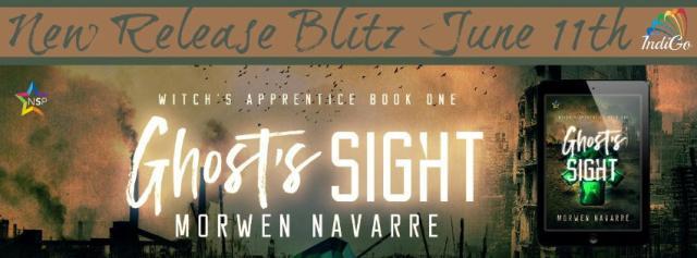 Morwen Navarre - Ghost's Sight Banner