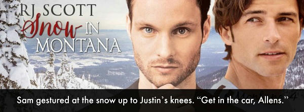 R.J. Scott - Snow In Montana Banner 4