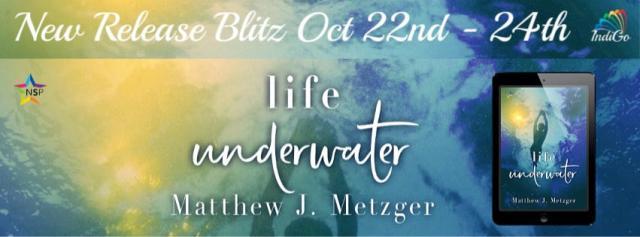 Matthew J. Metzger - Life Underwater RB Banner