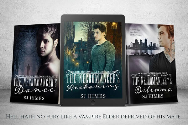 S.J. Himes - The Sorcerer's of Beacon Hill Series Banner