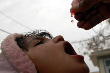Window for polio eradication