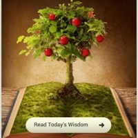 """Wisdom Story: """"The Short-Sighted Brothers"""""""