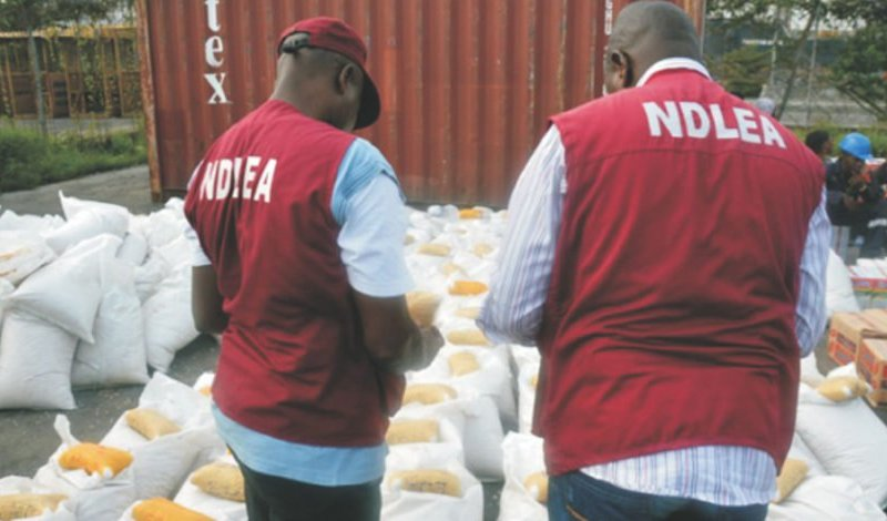 NDLEA confiscates over 9607kg of illicit drugs