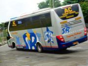 Kamu Punya Nyali Tinggi? Rasakan Sensasi Ugal-ugalan 6 Bus Tercepat Ini yang Memacu Adrenalin