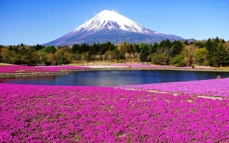 Pemandangan Gunung fuji
