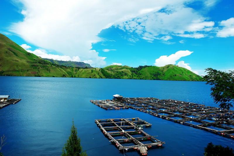 Tongging danau toba