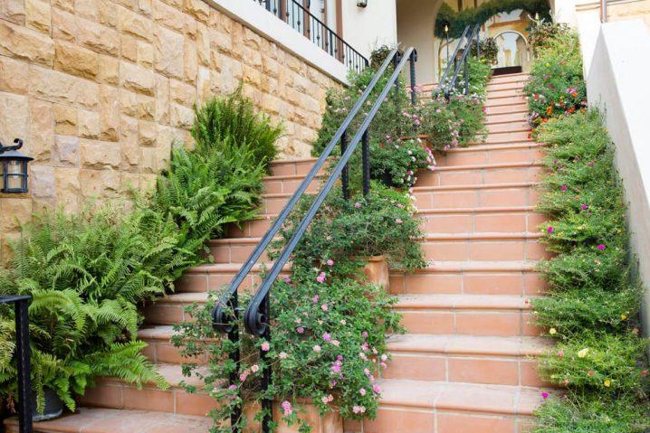 pot bunga cantik di tangga