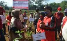 Permalink ke Padat Karya Tunai, Desa Kasih Pekerjakan Pemuda Tani Tanam Bibit Jambu Kristal Merah