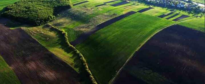 40° CIA - Agricoltura protagonista nella crescita del Paese