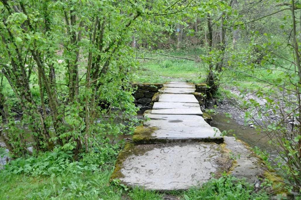 ponts_de_chayes_lienne_4
