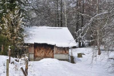 Haute-Bodeux | Une petite remise sympathique