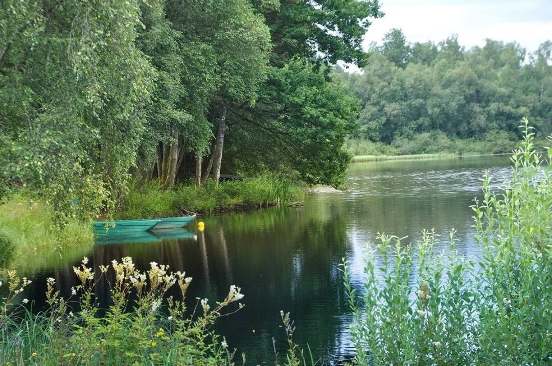 Portfolio-2019-Mediardenne-L'étang des Epioux