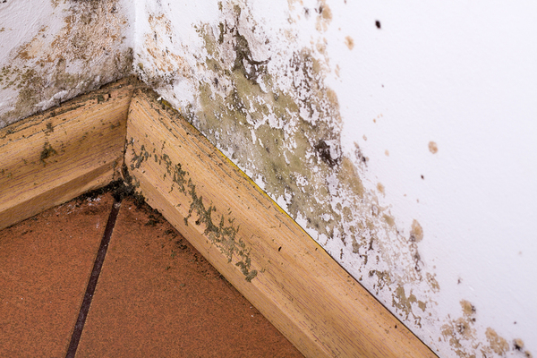 Water damage on a wall