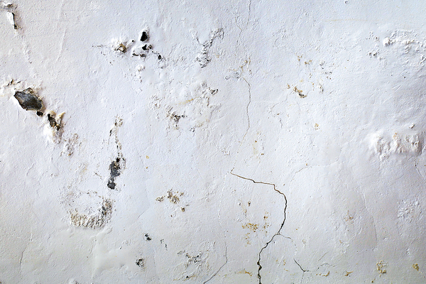 Wall with mold and cracks present.