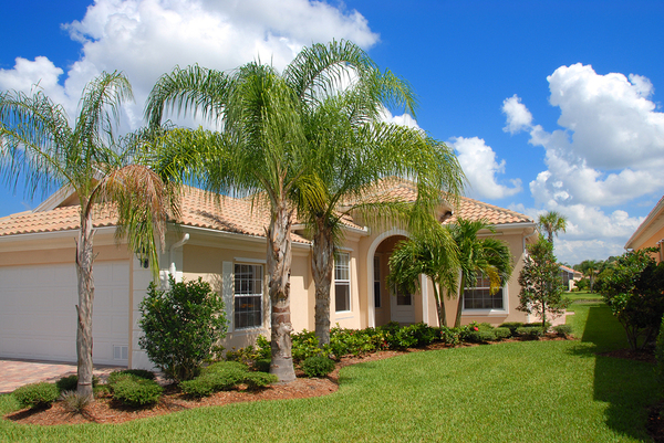 House with green lawn and palm trees.
