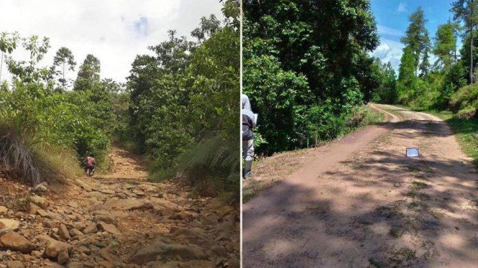 Pemprov Rintis Jalan Bua - Rantepao, Pengaspalan Dimulai Tahun 2020