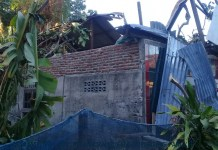 Pohon Sukun Tumbang Menimpa Rumah Warga Pulau Sarappo Lompo