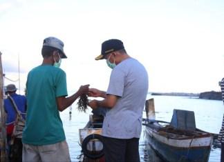 Menko PMK Dorong Pemberdayaan Petani Rumput Laut di Bulukumba