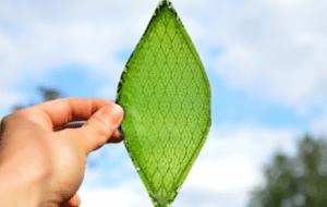 artificial silk leaf