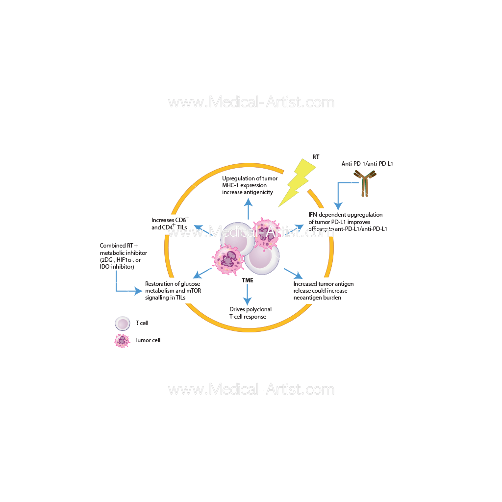Medical Charts And Diagrams For Annals Of Oncology