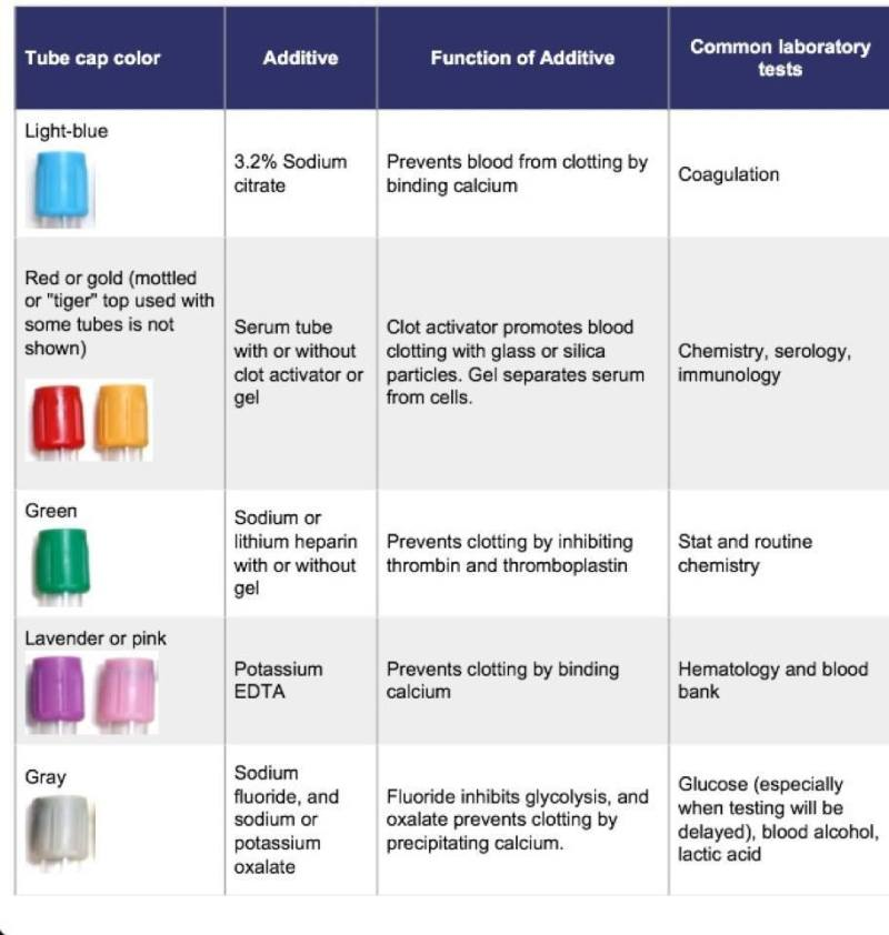 Blood Vial Color Codes Coloringsite