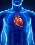 Heart Heal Thyself