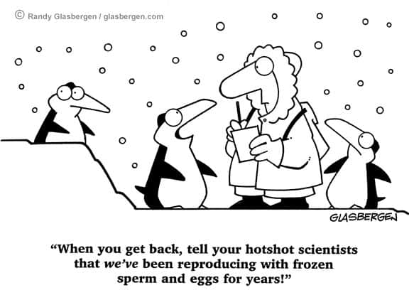 Frozen Sperms and Eggs Cartoon