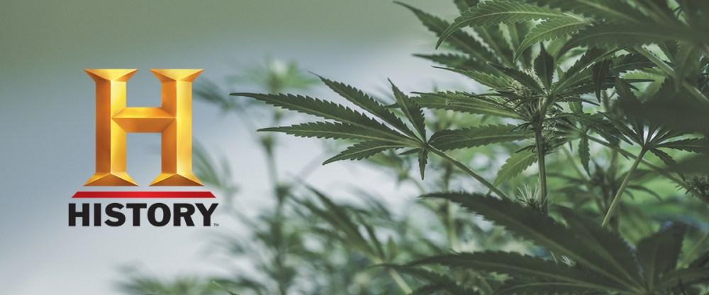 cannabis on TV