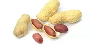 Peanut Image