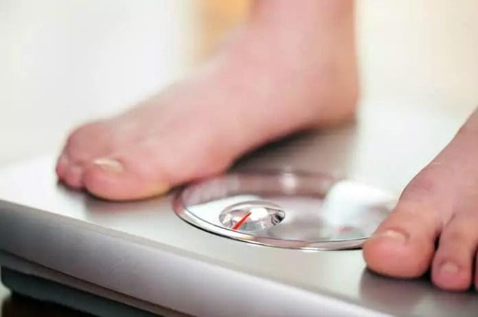 genetics of obesity