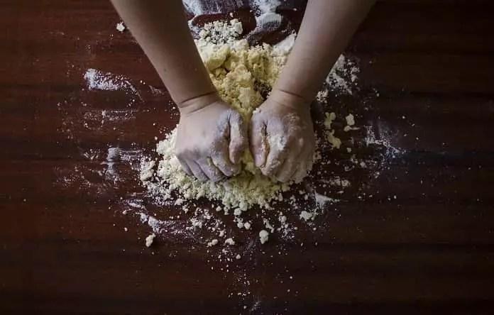 baker's yeast