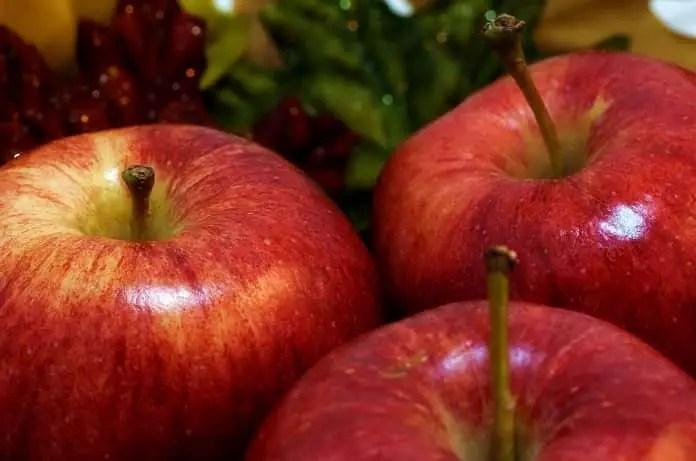 apple polyphenol