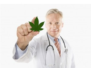 image_doctor-marijuana-leaf-001