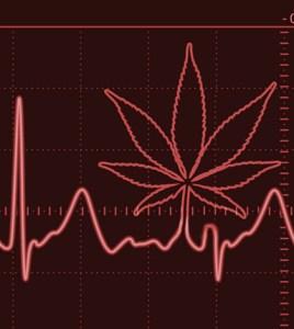 thc-heartattack-study-06-10