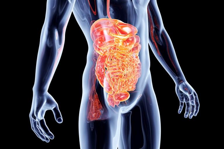 Quel régime adopter en cas de gastro-entérite?
