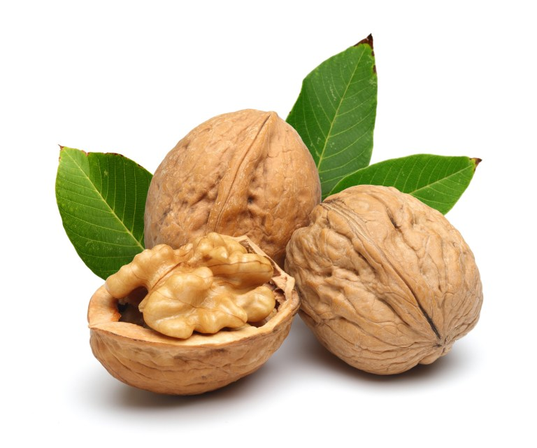 Des noix pour le cerveau: une évidence