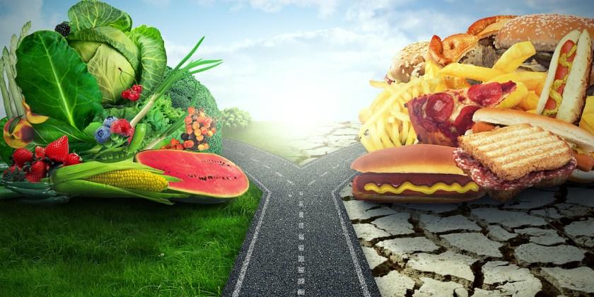 """Résultat de recherche d'images pour """"changement de régime alimentaire"""""""