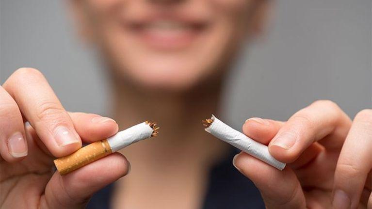 Kudzu : dites stop au tabac et à l'alcool