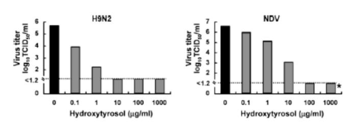 hydroxytyrosol h9n2 ndv