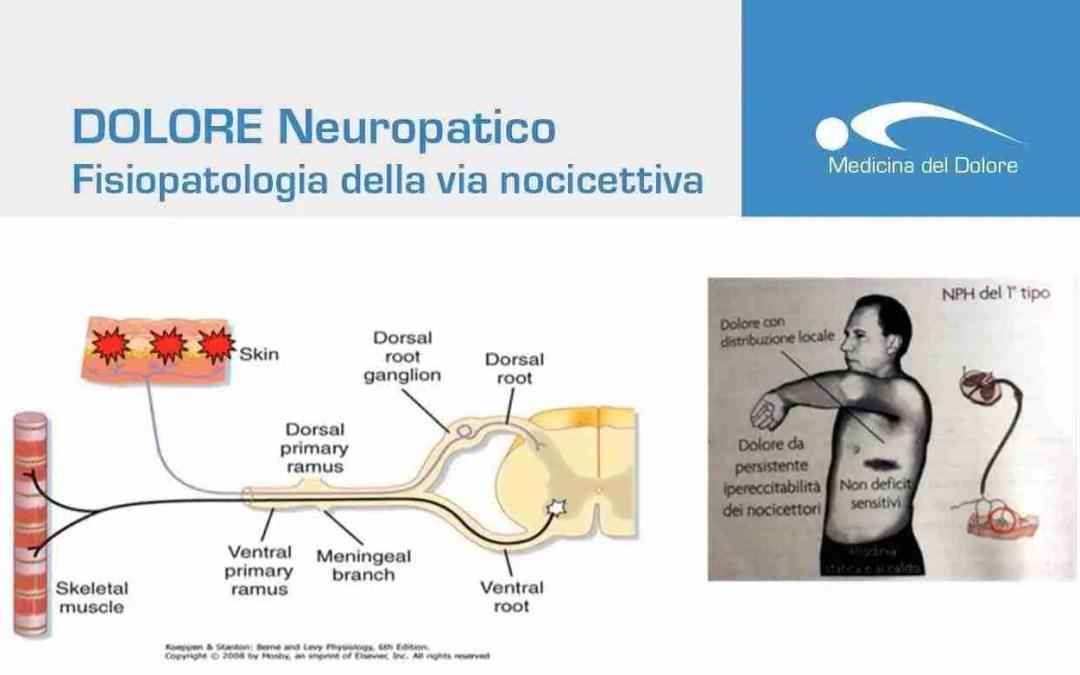 Fisiopatologia della via nocicettiva