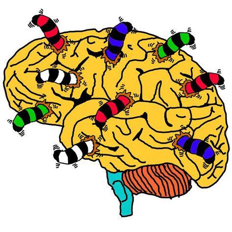 Cáncer de cerebro y Teléfonos Móviles