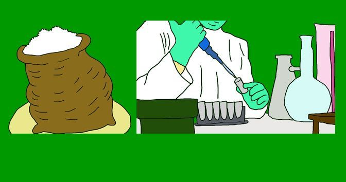 Sacarina y Cáncer en la Medicinapedia