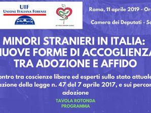 """Conferenza alla camera dei Deputati l'11 Aprile 2019: """"Minori Stranieri in Italia: nuove forme di accoglienza tra adozione e affido"""""""