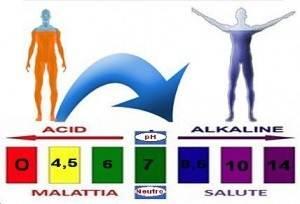 Rapporto acido/alcalino