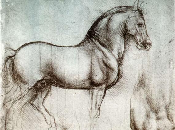 Study_of_horse