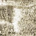Stradioti: Balkan Mercenaries in Fifteenth and Sixteenth Century Italy